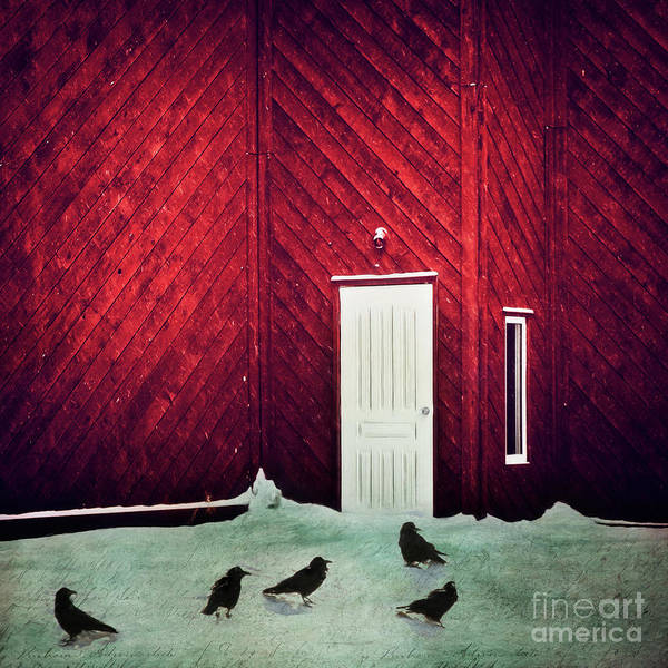 Wall Art - Photograph - The Closed Door And The Ravens by Priska Wettstein