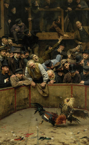 Wall Art - Painting - The Cockfight, 1889 by Remy Cogghe