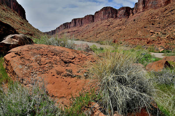 Photograph - The Colorado River Near Moab Utah by Ray Mathis
