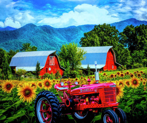 Wall Art - Photograph - The Colors Of Country In Hdr Detail by Debra and Dave Vanderlaan