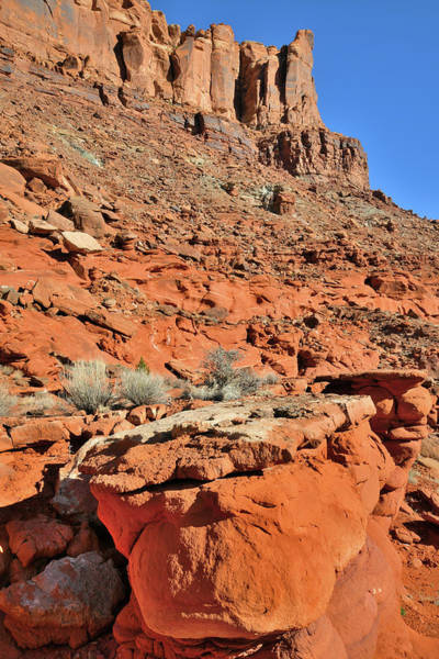 Photograph - The Colors Of Utah's Red Rock by Ray Mathis