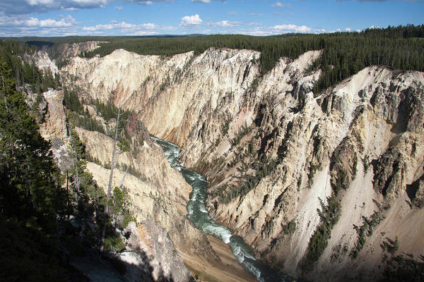 Yellowstone Canyon Photograph - The Colourful Gorge Of The Yellowstone by Mike Copeland