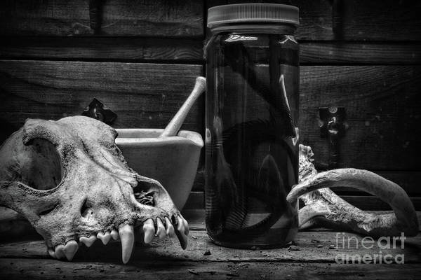 Wall Art - Photograph - The Concoction In Black And White by Paul Ward