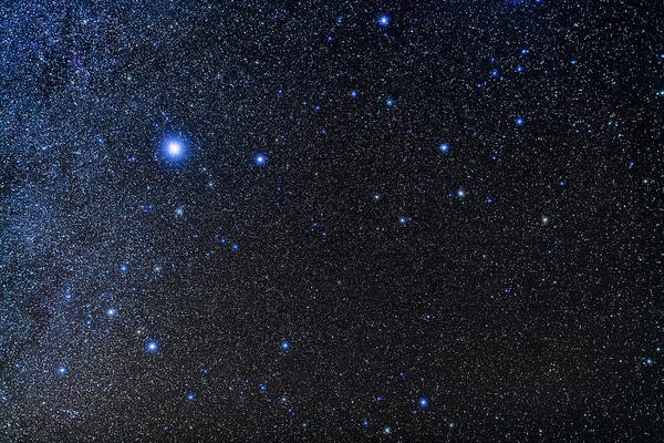 Wall Art - Photograph - The Constellations Of Canis Major by Alan Dyer