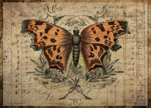 Digital Art - The Copper Butterfly by Terry Kirkland Cook