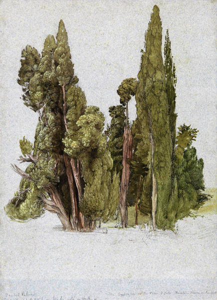 Wall Art - Painting - The Cypresses At The Villa D'este, Tivoli - Digital Remastered Edition by Samuel Palmer