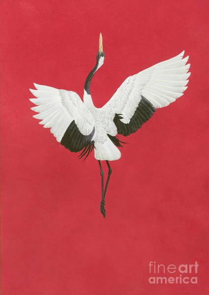 Wall Art - Painting - The Dance Red by Tim Hayward