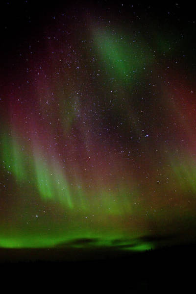 Yellowknife Wall Art - Photograph - The Dancing Sky by ©falling Leaves Photography - Stephanie Willis