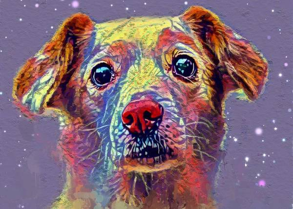 Wall Art - Painting - The Dog by Steve K