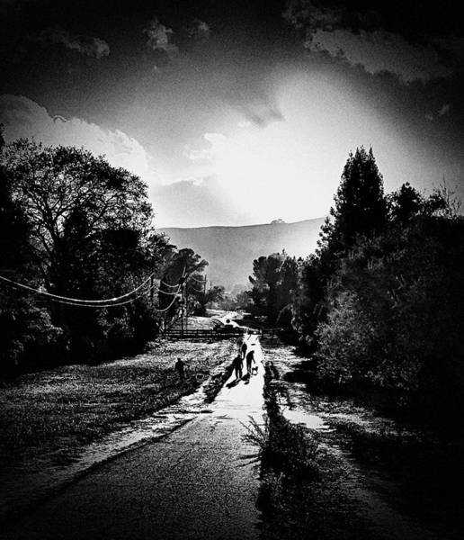Photograph - The Dog Walkers by Brad Hodges