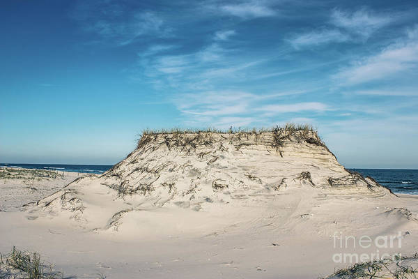 Wall Art - Photograph - The Dune by Colleen Kammerer