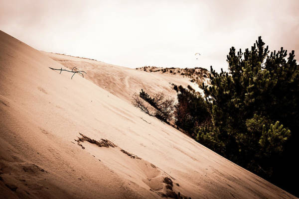 Photograph - The Dunes At Pyla by Georgia Fowler
