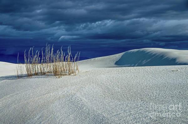 Wall Art - Photograph - The Dunes by Stephen Whalen