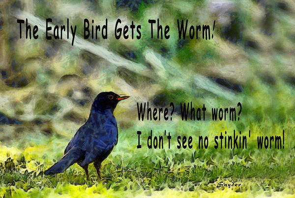 Photograph - The Early Bird Gets The Worm by Floyd Snyder