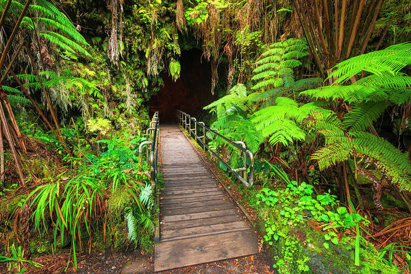 Wall Art - Photograph - The Entrance To The Thurston Lava Tube by Russ Bishop