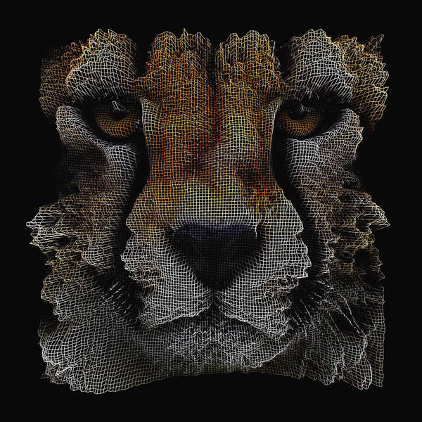 The Face Of A Cheetah Art Print