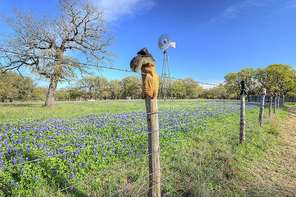 Photograph - The Famous Cowboy Boot Fence On The Willow City Loop by JC Findley
