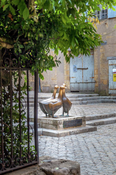 Wall Art - Photograph - The Famous Geese Of Sarlat by W Chris Fooshee