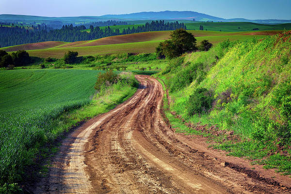 Photograph - The Farm Road In The Palouse by Rick Berk