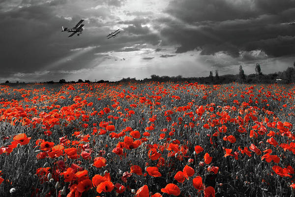 Photograph - The Final Sortie Aircraft Over Field Of Poppies Wwi Version by Gary Eason