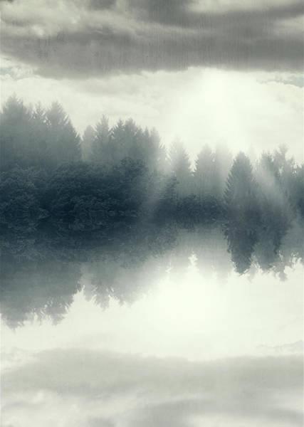 Photograph - The Floating Forest by Dirk Wuestenhagen