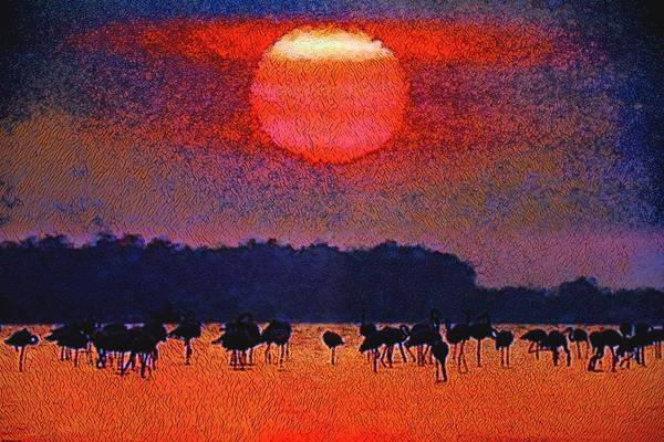 Photograph - The Flock At Sunset by Don Columbus