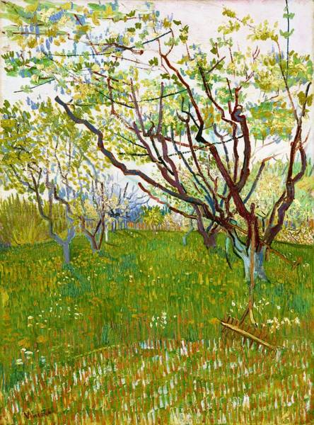 Wall Art - Painting - The Flowering Orchard - Digital Remastered Edition by Vincent van Gogh