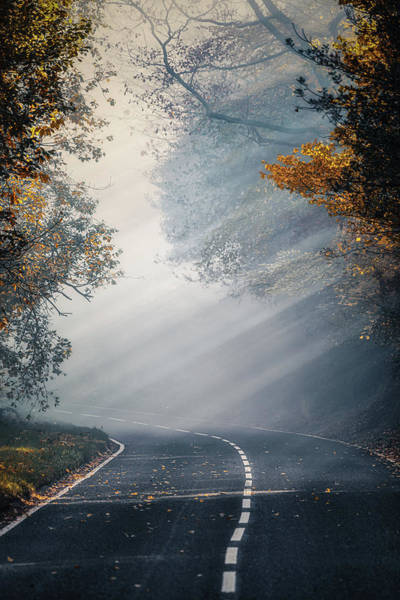 Photograph - The Foggy Autumn Road No 2 by Chris Fletcher
