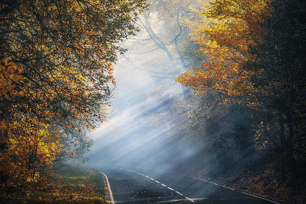 Photograph - The Foggy Autumn Road No 3 by Chris Fletcher
