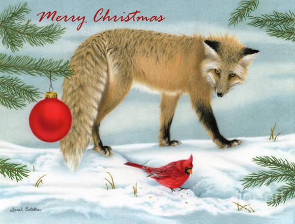 Red Cardinal Drawing - The Fox And The Cardinal- Merry Christmas by Sarah Batalka