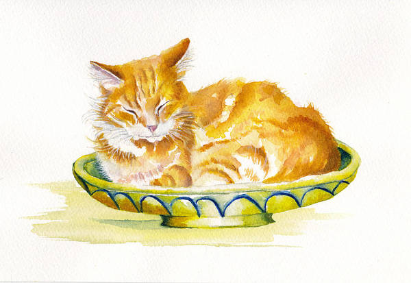 Wall Art - Painting - The Fruit Bowl by Debra Hall