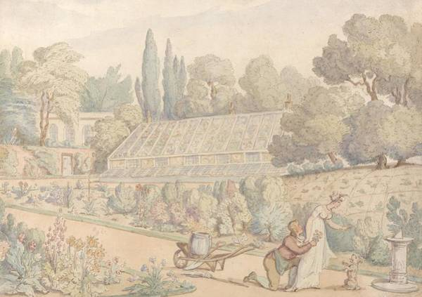 Drawing - The Gardener's Offering by Thomas Rowlandson