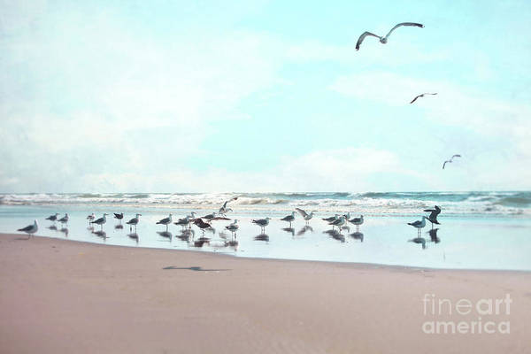 Wall Art - Photograph - The Gathering by Sylvia Cook