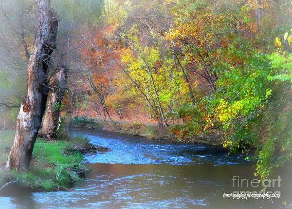 Photograph - The Gentle Autumn by Tami Quigley