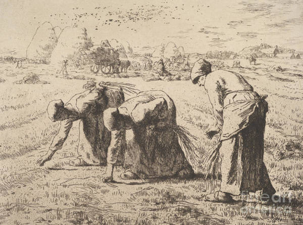 Jeans Drawing - The Gleaners  Etching By Millet by Jean Francois Millet