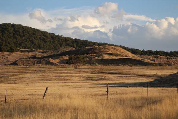 Photograph - The Golden Hour In Utah by Colleen Cornelius
