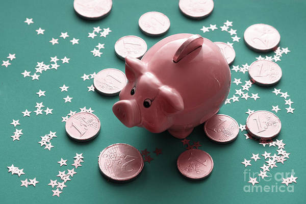 Photograph - The Golden Pig  New Year.traditional Chinese Symbol Piggy Bank by Marina Usmanskaya