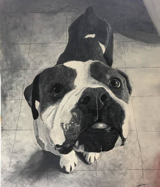 Wall Art - Painting - The Good Boy by Taylor Warner