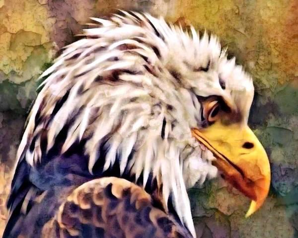 Digital Art - The Grandfather Eagle  by Scott Wallace Digital Designs
