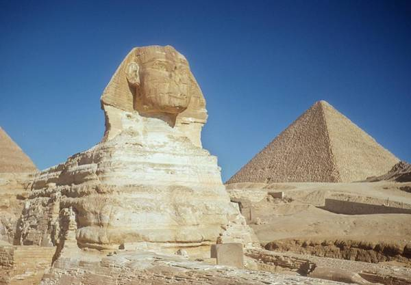 Photograph - The Great Sphinx Of Giza by Michael Ochs Archives