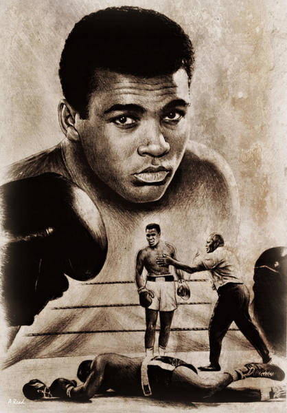 Wall Art - Drawing - The Greatest by Andrew Read
