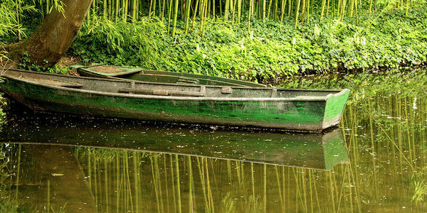 Photograph - The Green Boat by E Faithe Lester