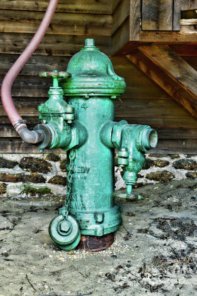 Wall Art - Photograph - The Green Fire Hydrant by Paul Ward