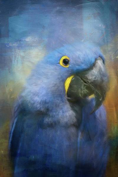 Painting - The Happy Macaw by Jai Johnson