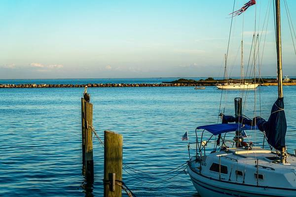 Wall Art - Photograph - The Harbor by Ric Schafer