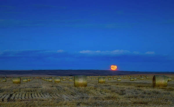 Photograph - The Harvest Moon Above A Field Of Hay by Alan Dyer