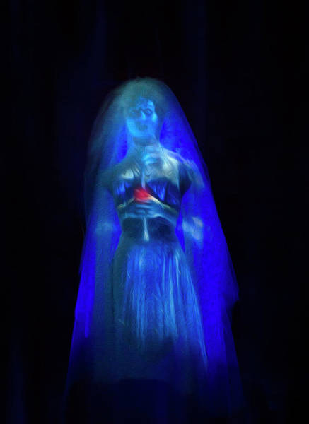 Wall Art - Photograph - The Haunted Mansion Bride by Mark Andrew Thomas