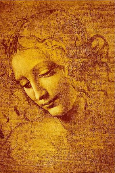 Wall Art - Painting - The Head Girl Said      by Leonardo da Vinci