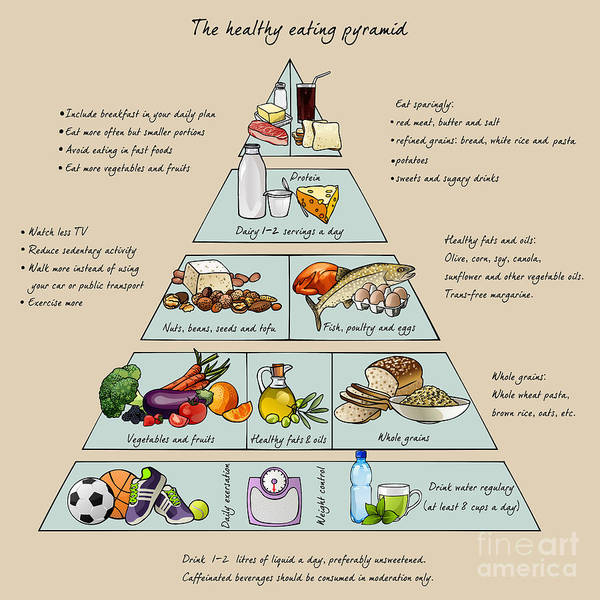 Wall Art - Digital Art - The Healthy Eating Pyramid. Colorful by Dalmingo