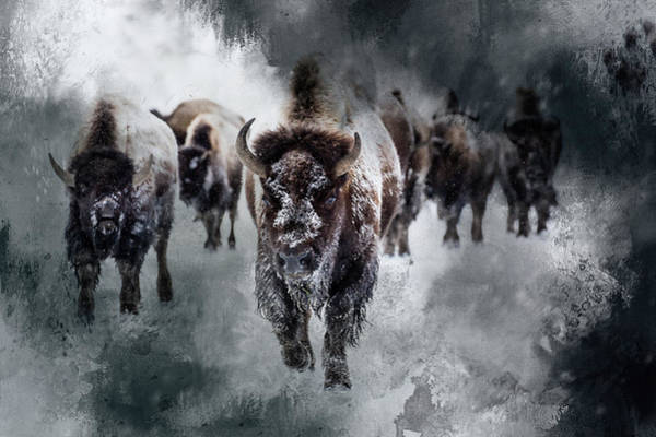 Wall Art - Digital Art - The Herd by Tim Palmer